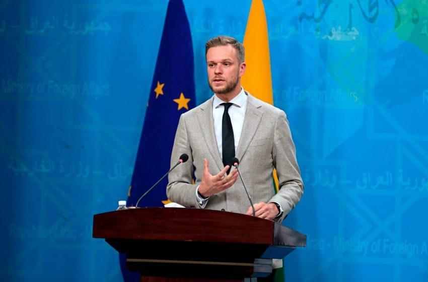СМИ Австрии: Литва хочет ужесточить преследование мигрантов на границе с Беларусью со стороны ЕС